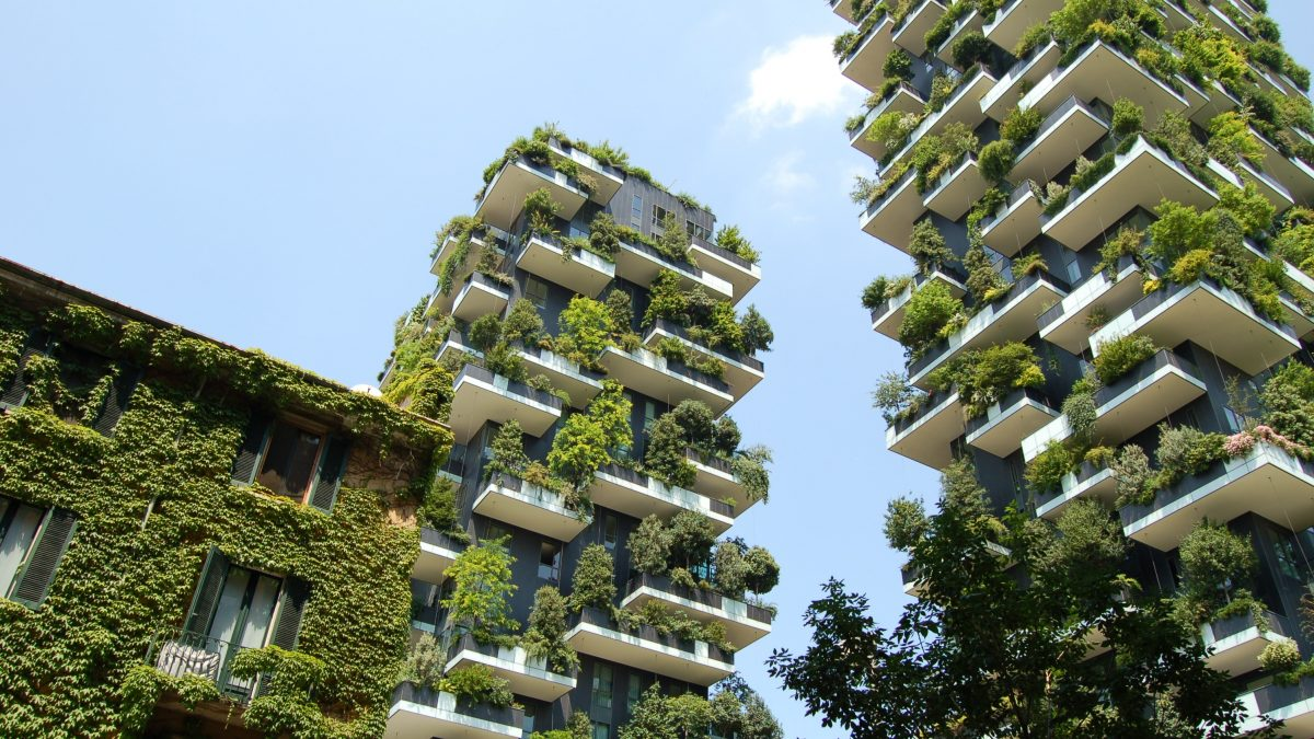 """How to prevent city climate action from becoming """"green gentrification"""""""